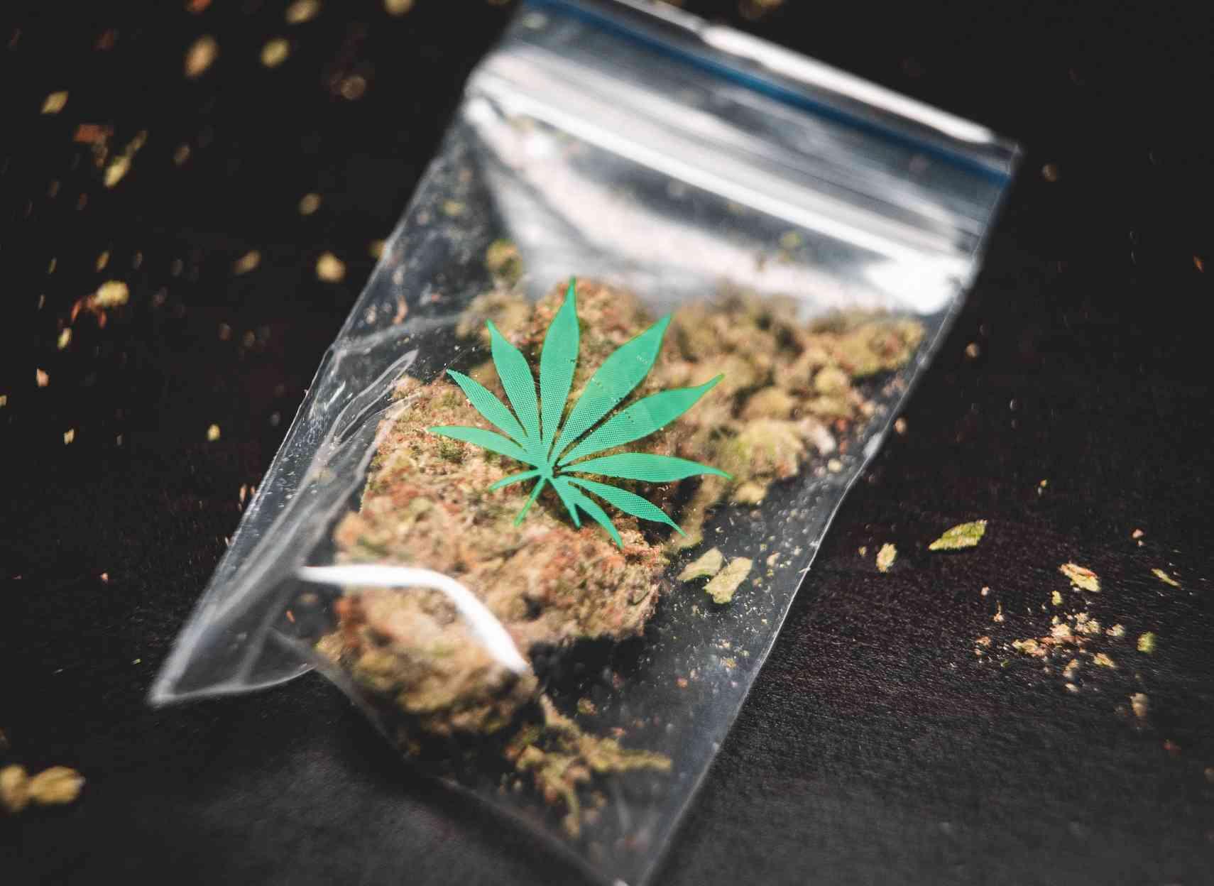 Campagne néo-zélandaise sur les dangers du cannabis au volant